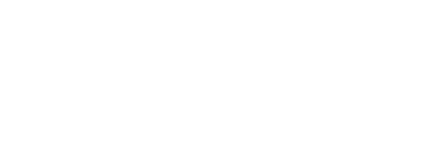 Our company logo
